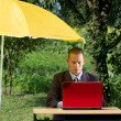Businessman Working Outdoors — Stock Photo #9291601