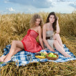 Stock Photo: Two beautiful slavonic girls on picnic