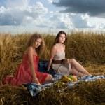 Two beautiful slavonic girls on picnic — Stock Photo #8468285