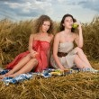 Two beautiful slavonic girls on picnic — Stock Photo #8468288