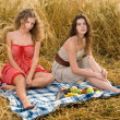 Two beautiful slavonic girls on picnic - Stock Photo