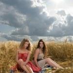 Two beautiful slavonic girls on picnic — Stock Photo #8468387
