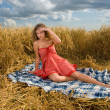 Beautiful slavonic girl on picnic - Stock Photo