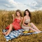 Two beautiful slavonic girls on picnic — Stock Photo #8468416