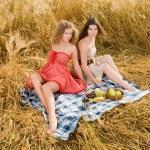 Two beautiful slavonic girls on picnic — Stock Photo #8468592