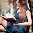 Business woman reviewing diary at city park - Foto de Stock