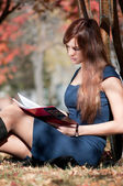 Business woman reviewing diary at city park — Stock Photo