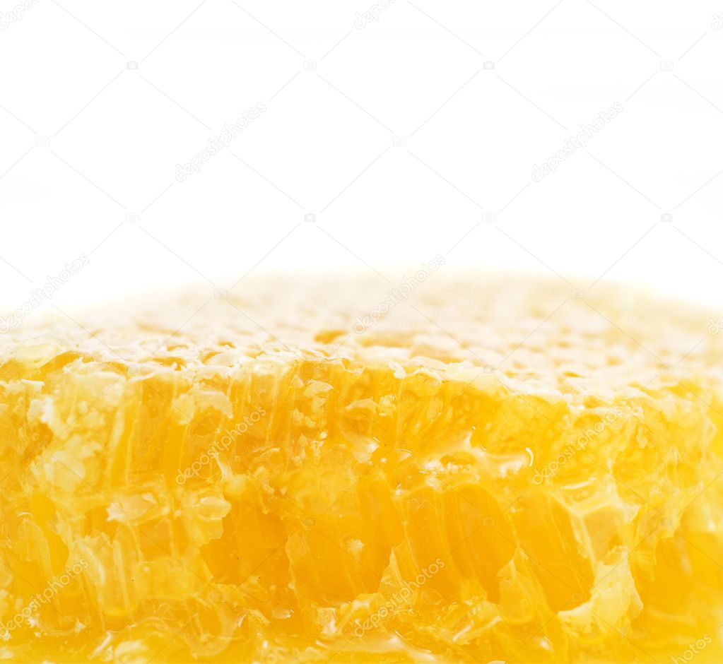 Honeycomb close up on the white  Stock Photo #9327280