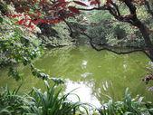 Green Lake — Stock Photo