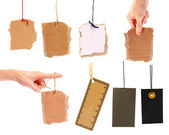 Set of blank cardboard tags hanging on white background — Stock Photo