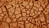 Texture of the dry cracked earth — Stock Photo