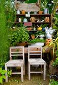Small garden — Foto de Stock