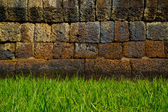 Vintage wall and green grass — Stock Photo