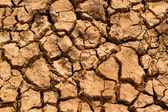Crack and dry soil — Stock Photo
