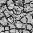 Crack and dry soil — Stock Photo #9043735