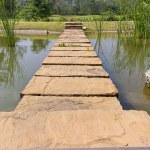 Stone bridge — Stock Photo #9719269