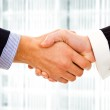 Closeup picture of businesspeople shaking hands, making an agree — Stock Photo #9360691