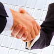 Closeup picture of businesspeople shaking hands, making an agree — Stock Photo #9361520