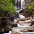 Stock Photo: Waterfalls in deep forest