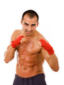 Portrait of young boxer man over white background — Stock Photo
