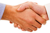 Closeup of shaking hands, isolated — Stock Photo