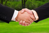 Global warming handshake - Conceptual image — Stock Photo