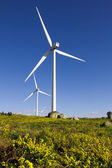 Beautiful lansdcape with wind turbines generating electricity — Stock Photo