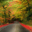 Autumn road — Stock Photo #9379139