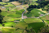 Bauernhof felder in insel s. miguel, azoren — Stockfoto