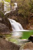 Cachoeira na selva — Fotografia Stock
