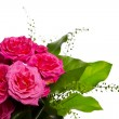 Decoration for greeting card from pink roses — Foto de stock #8706552