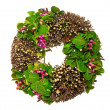 Spring wreath with leaves and berrys — Stock Photo