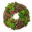 Stock Photo: Spring wreath with leaves and berrys