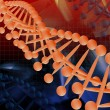 The model of DNA — Stock Photo #10268269