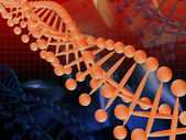 The model of DNA — Stock Photo