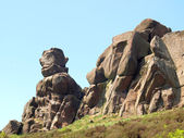 The Roaches, Peak District National Park — Stock Photo