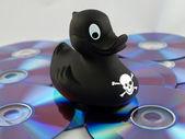 Digital Media Piracy — Stock Photo