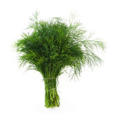Fennel — Stock Photo