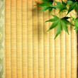 Japanese green maple leaf on tatami mat — Stock Photo