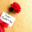 "Red carnation with ""Mother's day"" message card — Stock Photo #10112030"
