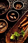 Spice on the coffee beans background. — Stock Photo