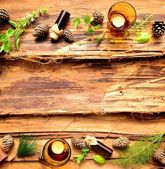 Aromatherapy supplies,herb and pine cone — Stock Photo