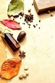 Autumn leaves and aromatherapy supplies — Foto Stock