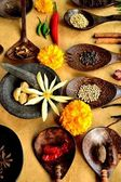 Spice,spoon with Asian tropical flower — Stock Photo