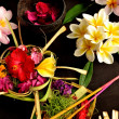 Balinese Hindu offerings and plumeria - Stock Photo