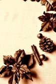 Poinsettia with pine cone.sepia — Stock Photo