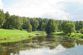 Summer landscape with green grass, forrest and river — Stock Photo