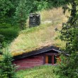 Stock Photo: Swedish cottage