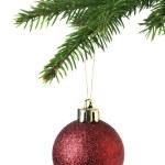 Рожденственский орнамент на дереве — Стоковое фото