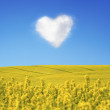 Royalty-Free Stock Photo: Oilseed and a heart shaped cloud